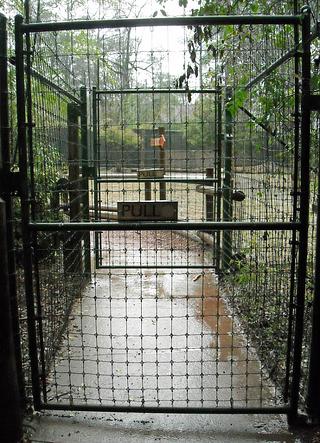 deer_fence_gate-resized-600.jpg