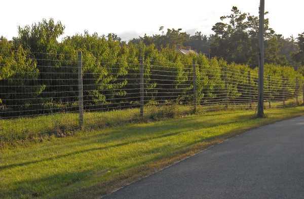 High Tensile Fence Vs Low Carbon Fence What S The