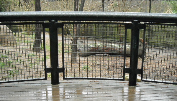 Wire mesh for railing safety