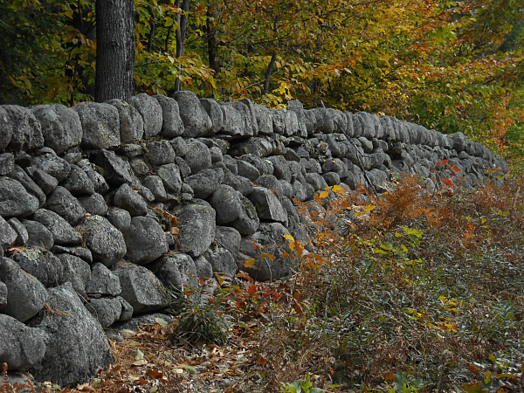 stone wall in autumn