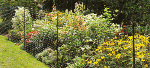 Wire Mesh For Garden Fencing