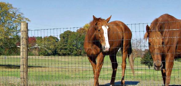 Woven 2 Quot X4 Quot Horse Fence