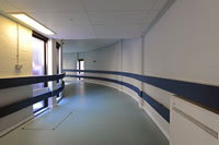 Hospital Wall Protection