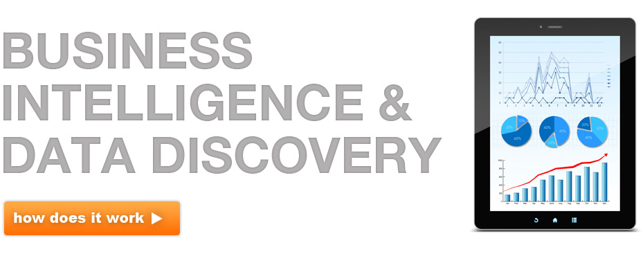 Business Intelligence & Data Discovery