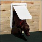 Gain Freedom With A Pet Door For Your Screen Door
