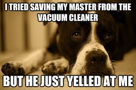 Dog afraid of vacuum