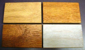 Cambara hardwood samples with different finishes resized 345
