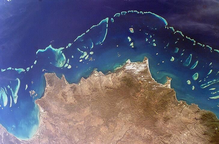 The Great Barrier Reef Is Critically Injured