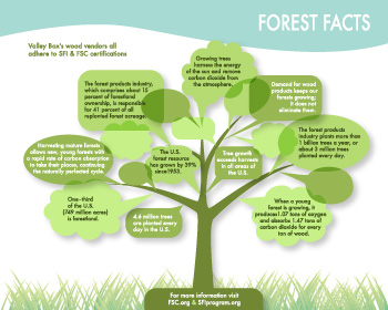 case treetop forest products essay Treetop forest products case study essays view the embedded image gallery online at: http:///en/products#sigproidcbefa1ab39  hi there, would you like to get such a.