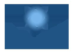 America Association of Inside Sales Professional