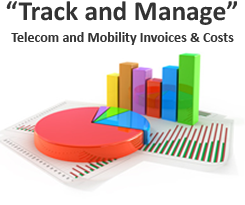 Telecom Management and Consulting