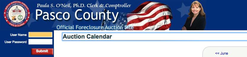 public-auction.png