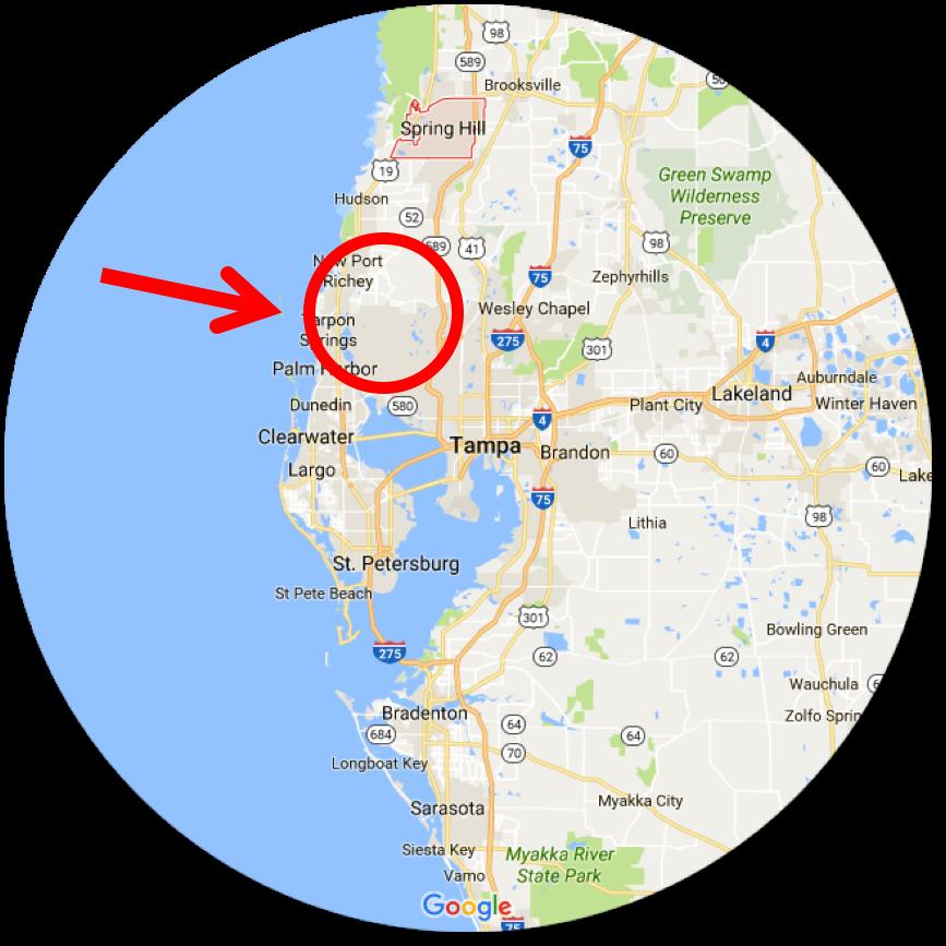 tampa-map-arrow.png