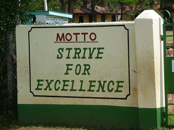 strive for excellence