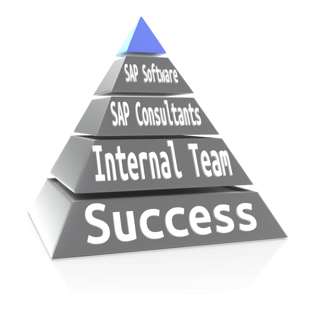 How To Plan Your Sap Project Resource Requirements Consultation