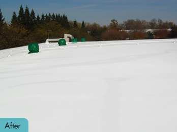 singleply_after-1