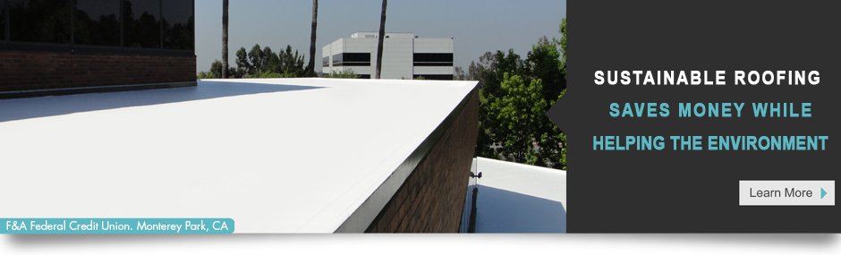 True Sustainable Roofing