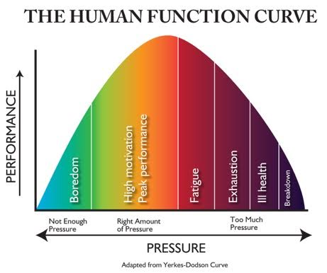 CW_Human_Funtion_Curve_Graphic.jpg