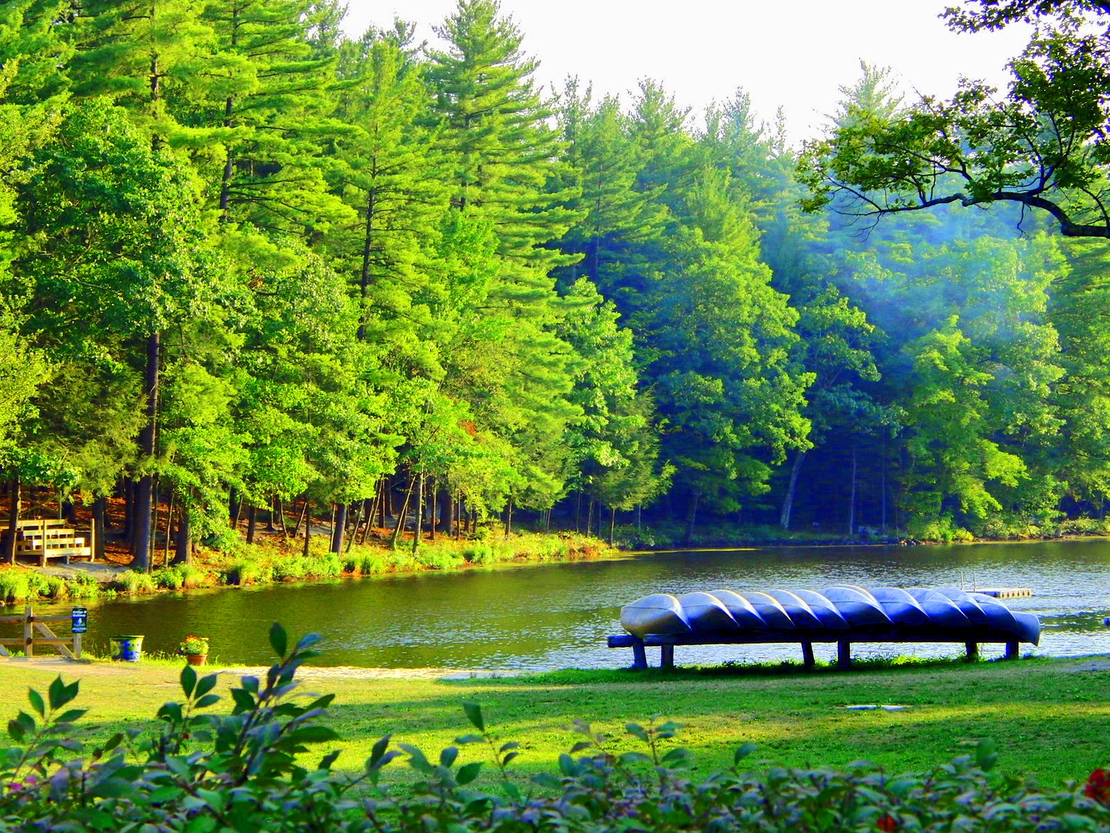 Pinemere_Camp_grounds