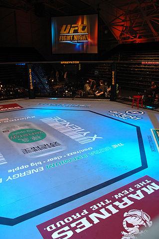 319px-UFC-Octagon-USMCPhoto
