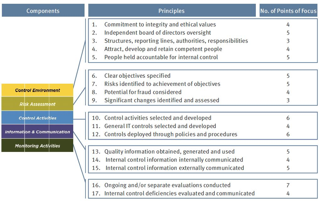 What Are Roles and Responsibilities of Audit Committee?