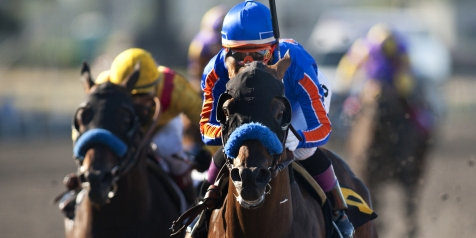 breeders cup contenders game on dude quintevents
