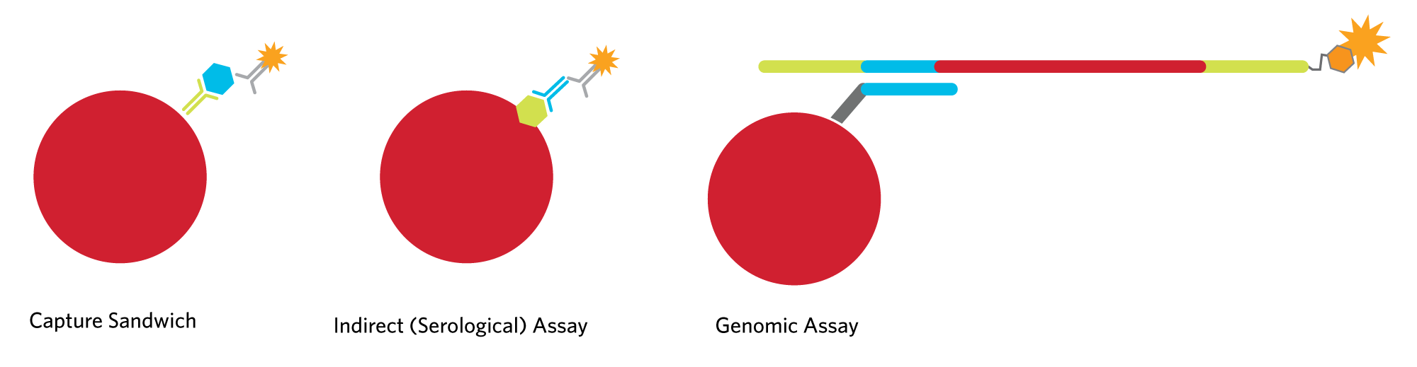 Protein-based Assay Chemistries