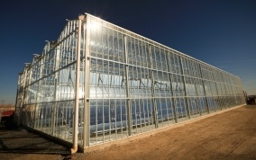 Solar powered oil recovery: a model for the future?