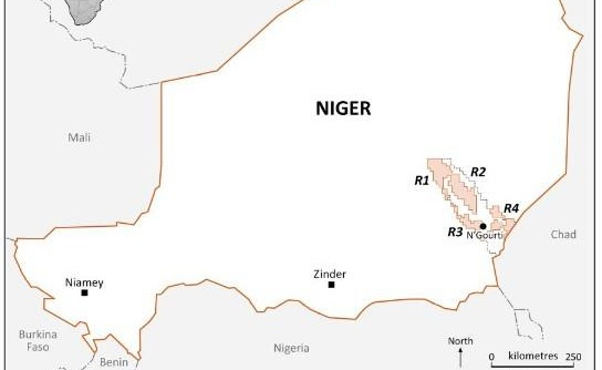 Savannah Petroleum announces Bushiya oil discovery, onshore Niger
