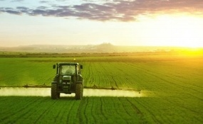 African Development Bank Supports Morocco's Agriculture