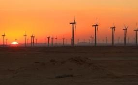 renewable-projects.jpg