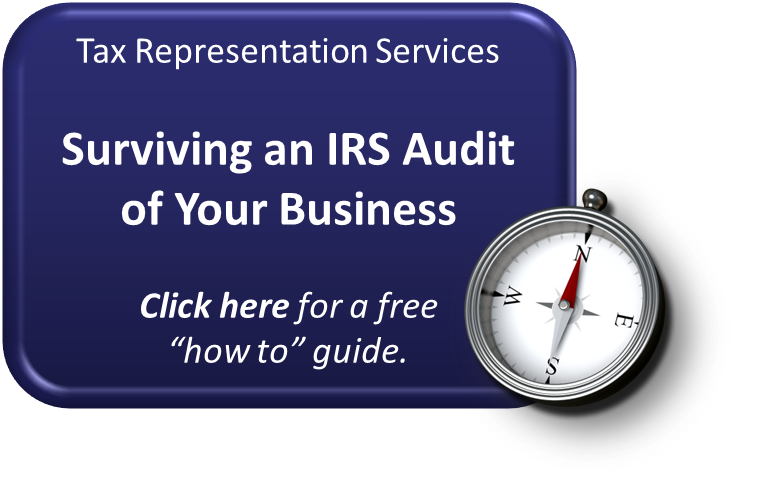 business tax audit