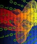 abstract_colorful_binary_matrix_digital_transformation.jpg