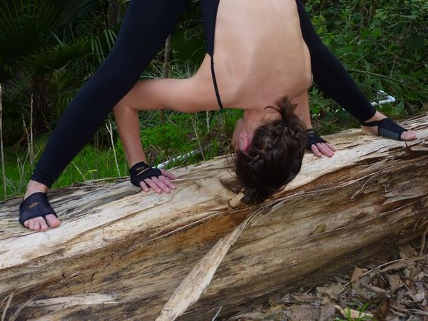 Prasarita Padottanasana, Wide-Legged Forward Bend