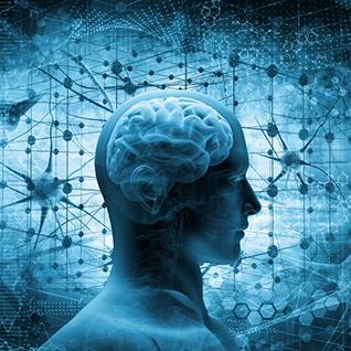 Brain-Image.jpg