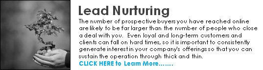 lead nurturing home call to action