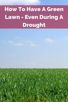 How To Have A Green Lawn Even During A Drought