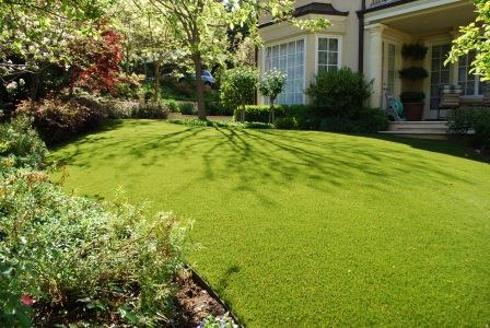 aritificial turf in a back yard in san jose