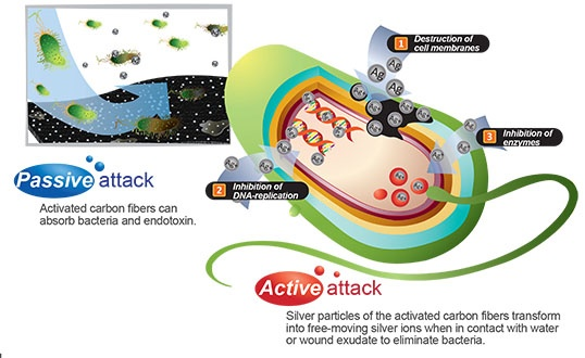 Kocarbon Silver with Carbon layer wound dressing attacking bacterial DNA