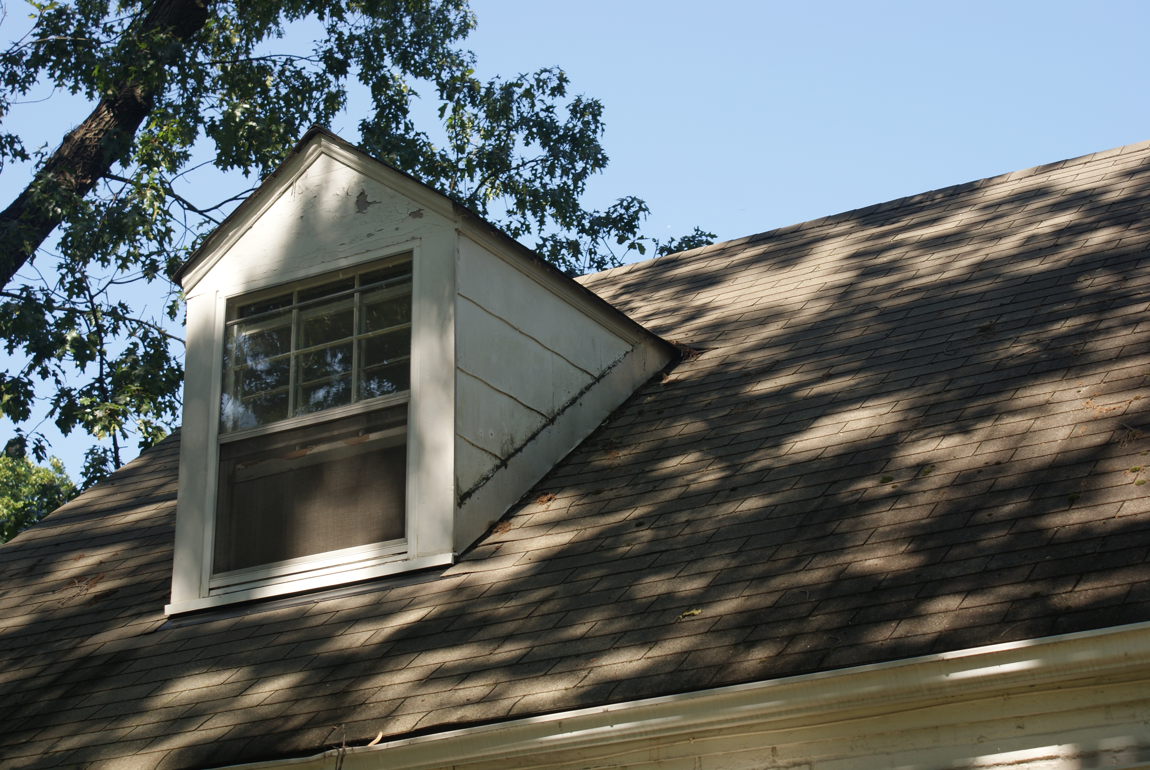 Full Home Makeover Windows Siding And Gutters Oh My