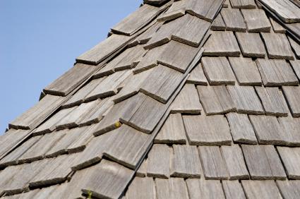 cedar_roof-resized-600