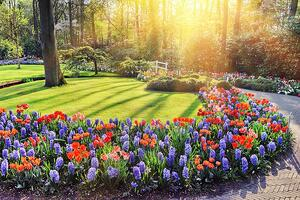 Spring-Landscape-With-Colorful-86021720_copy.jpg