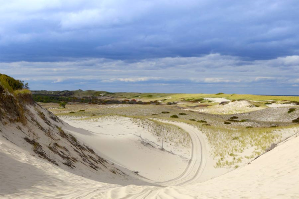 Cape Cod Sand Dunes resized 600