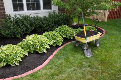 Spring Landscaping spring tree & shrub care: preventing weeds