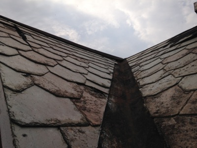 Springtime Roof Readiness!