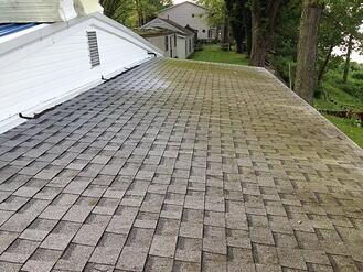moss_covered_shingled_flat_roof