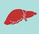 Module: Liver