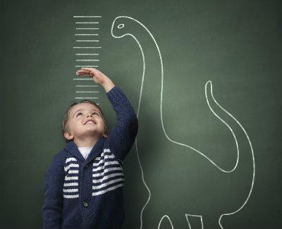 Developmental Screenings & Assessments