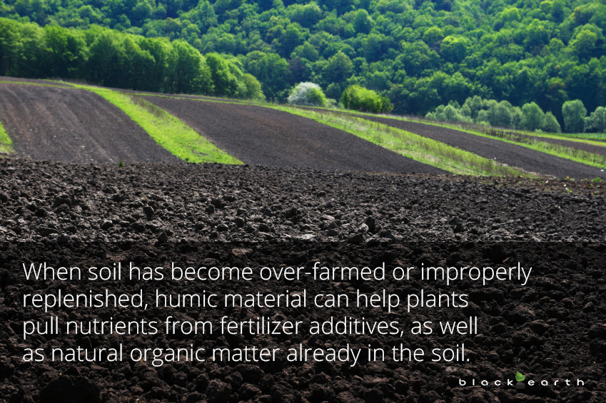 Water Retaining Soil : Knowing when humic material can help with water retention