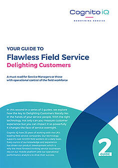 Digital Guide - Delighting Customers.pdf-1